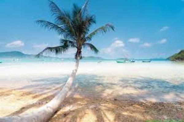 Du Lịch PHú Quốc với tua trọn gói Câu CÁ- Lặn ngắm san hô với giá cực rẻ...!!! 4